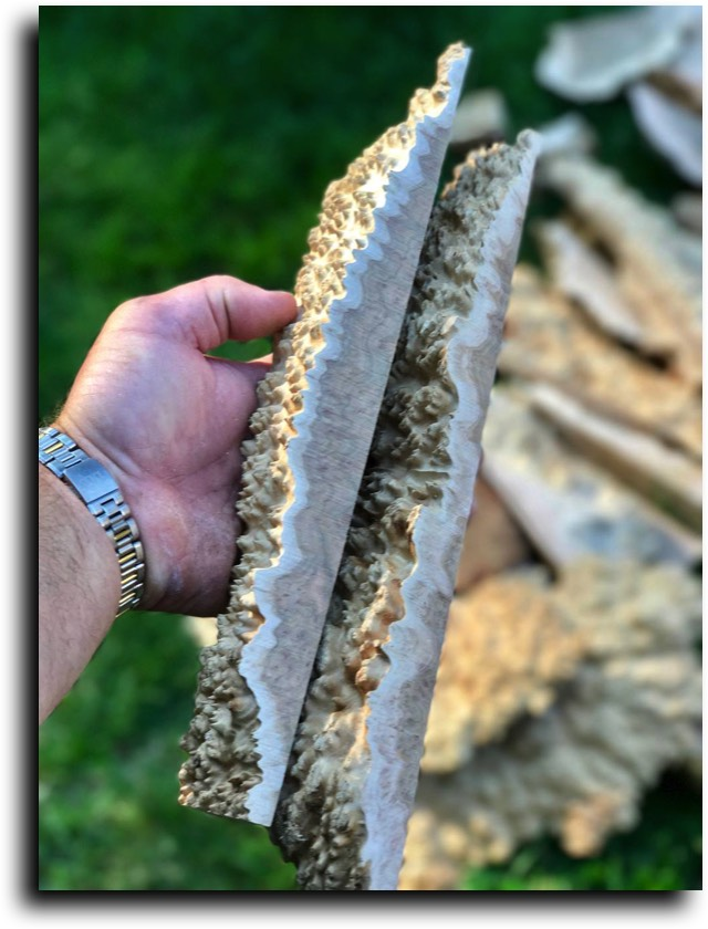 AustralianBurls.com Products - Burl Cutoffs © 2018 Jim Syvertsen
